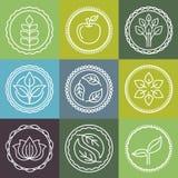 Emblèmes organiques de vecteur Image stock