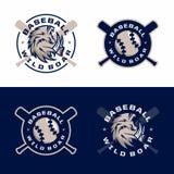 Emblèmes professionnels modernes réglés pour le tournoi de jeu de baseball Photographie stock libre de droits