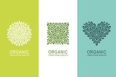 Embleem of etiketconcept met groene bladeren in cirkel, vierkant en hartvorm Organische het ontwerpelementen van het ecoproduct stock illustratie