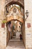 Embleem van de Kotor het Venetiaanse leeuw Stock Fotografie
