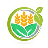 Embleempictogram voor bedrijfseconomie en ontwikkeling van voedselgoederen, vooral voor tarwe, organische rijst Stock Afbeeldingen