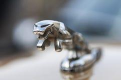 Emblem av Jaguar Royaltyfria Bilder