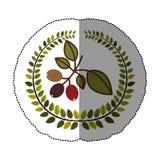 Emblem coffee tree icon design Stock Photos