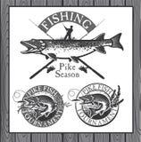 Emblem, etiketter och design för tappningforellfiske Arkivfoto