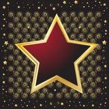 emblem formad sköldstjärna Arkivfoto