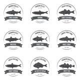 Emblem för etiketter för vektorfiskkonturer Fotografering för Bildbyråer