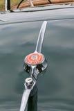 Emblem Jaguars XK 150 auf Autokofferraum Stockbild