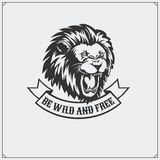 The emblem with lion. Royalty Free Stock Images