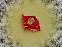 Emblem med bilden av Vladimir Lenin Ulyanov från serien 'Vladimir Lenin ', closeup Faleristics royaltyfri foto