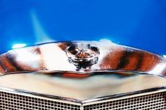 Emblem- och elementgaller i blå Retro bil royaltyfria bilder