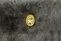 Emblem på en soldier& x27; s-lock royaltyfria bilder