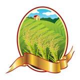 Emblem of Thai rice Stock Photo