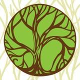 Sign tree. Emblem of tree green logo Stock Photos