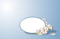 Emblema con i fiori della ciliegia Fotografia Stock
