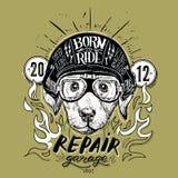 Emblema con il ritratto di un casco d'uso del motociclo del cane di Labrador Illustrazione di vettore royalty illustrazione gratis