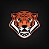 Emblema con la cabeza del tigre Plantilla del logotipo del equipo de deporte Imagen de archivo