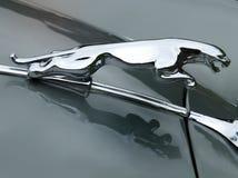Emblema de Jaguar na capota cinzenta imagem de stock
