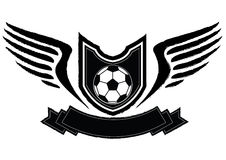 Emblema de la insignia del fútbol Fotografía de archivo libre de regalías