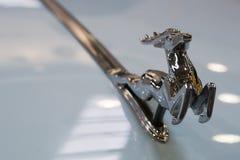 Emblema de plata del coche de los ciervos Imagen de archivo