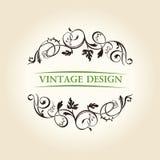 Emblema del diseño del ornamento de la escritura de la etiqueta de la decoración de la vendimia Imagen de archivo