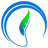 Emblema del foglio illustrazione di stock