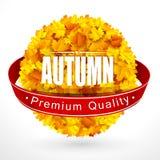 Emblema del otoño stock de ilustración
