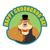 Emblema do dia de Groundhog Groundhog nos polegares do chapéu levanta e piscadelas Madeira Imagem de Stock Royalty Free