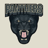 Emblema enojado del equipo de deporte de la pantera Imágenes de archivo libres de regalías