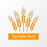 Emblema eps10 das orelhas do trigo ilustração stock