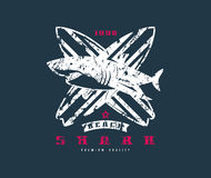 Emblema praticante il surfing dello squalo Progettazione grafica per la maglietta Immagine Stock Libera da Diritti