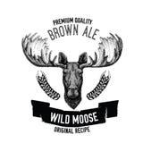 Emblema tirado mão da cerveja com alces selvagens Foto de Stock Royalty Free