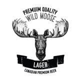Emblema tirado mão da cerveja com alces selvagens Imagens de Stock