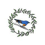 Emblema tirado mão do pássaro Imagem de Stock Royalty Free
