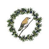 Emblema tirado mão do pássaro Imagens de Stock Royalty Free