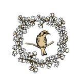 Emblema tirado mão do pássaro Foto de Stock Royalty Free