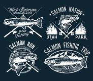 Emblemas de Salmon Fishing del vintage, etiquetas y elementos del diseño Ilustración del vector Fotografía de archivo