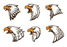 Emblemas del vector de Eagle calvo fijados Fotos de archivo