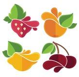 Emblemas lisos dos frutos Foto de Stock Royalty Free
