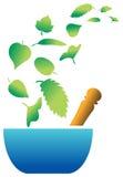 emblemat ziołowy ilustracji