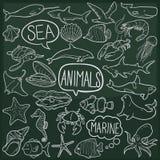 Sea Animals Ocean Traditional Doodle Icons Sketch Hand Made Design Vector vector illustration