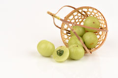 Emblic Myrabolan, Malacca drzewo, Indiański agrest (PHYLLANTHUS EMBLICA LINN ), owoc Obrazy Royalty Free