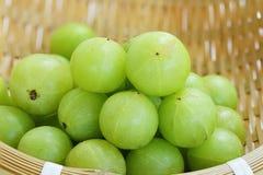 Emblica, amla grüne Früchte Stockfotografie