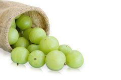 Emblica,amla green fruits Stock Photo