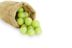 Emblica,amla green fruits Royalty Free Stock Images
