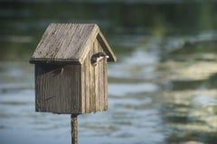 Emboîtement d'hirondelle dans la maison d'oiseau Image stock