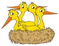 Emboîtement de cigogne (clip-art de vecteur) Image libre de droits