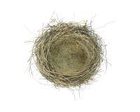 Emboîtement vide d'oiseaux Images stock