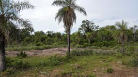 Emboscada山脉巴拉圭 免版税图库摄影