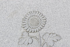 Emboss sunflower on grey wall, horizontal Stock Photo