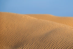 Embossed dunes in the desert. At sunset or sunrise Stock Photo